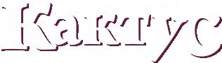 Рекламное агентство «FiKaktus»